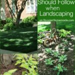 Landscaping-Tips.600