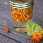 How-why-to-make-honeysuckle-glycerite